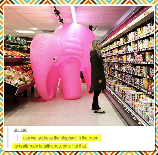 funny-store-elephant-pink-girl