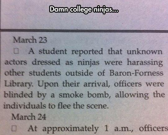 Ninja Bullying