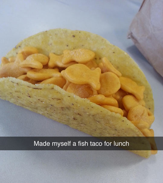 funny-taco-lunch-fish-candy
