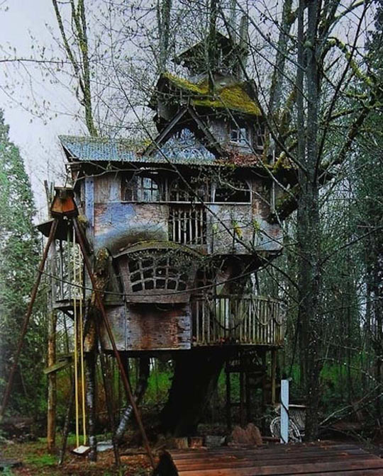 funny-tree-house-old-rusty-damaged-wood