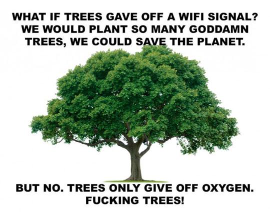 If Trees Had Wi-Fi
