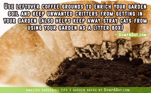DumpADay-Garden-Hacks-Coffee-grounds-fertilizer