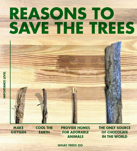 cool-chart-reasons-save-trees