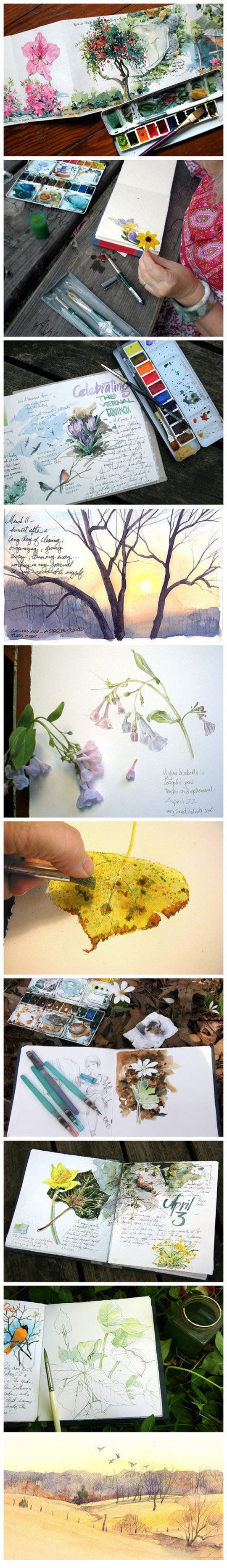 cool-color-journal-water-flowers-plants