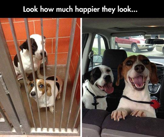 So Much Happier