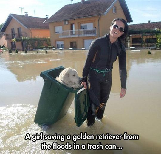 cool-girl-saving-golden-retriever-trash-can