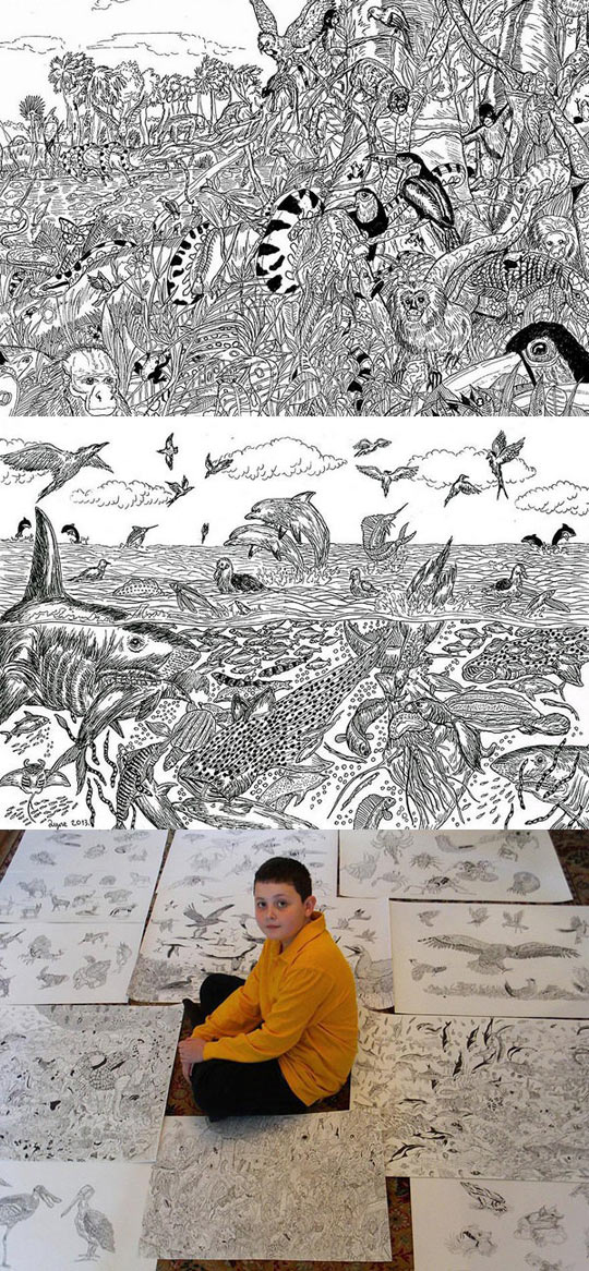 cool-kid-drawing-sea-detailed-bird