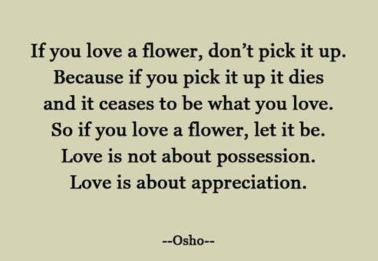 Appreciation, Not Possession