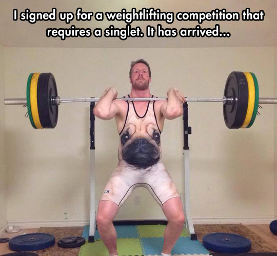 cool-weightlifting-competition-singlet-pug
