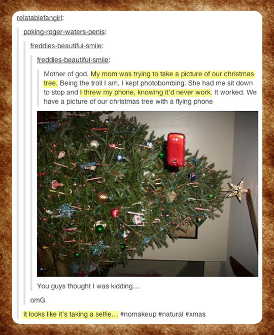 funny-Christmas-tree-phone-picture