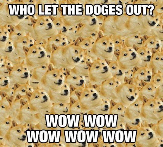 Who Let The Doges Out?