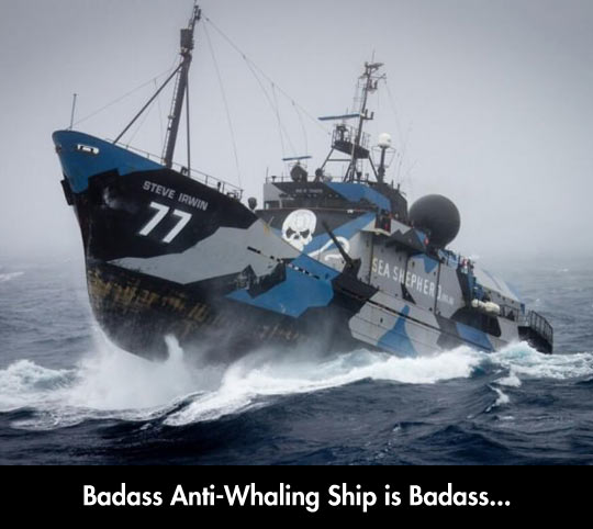 funny-Ship-ocean-waves-anti-whale