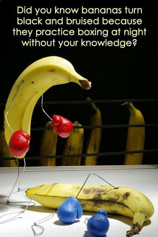 funny-banana-fact-boxing-bruise
