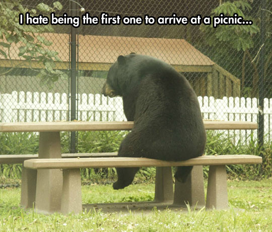 It's Unbearable