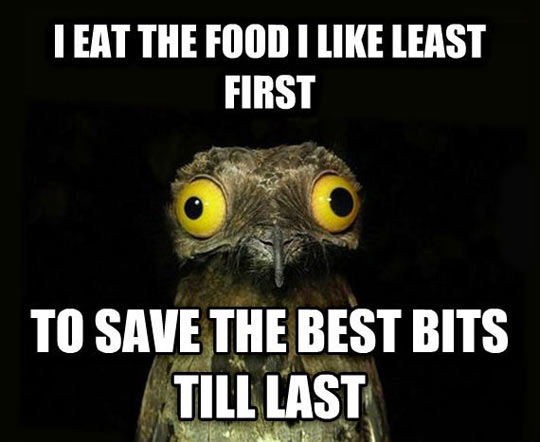 Every Meal I Eat