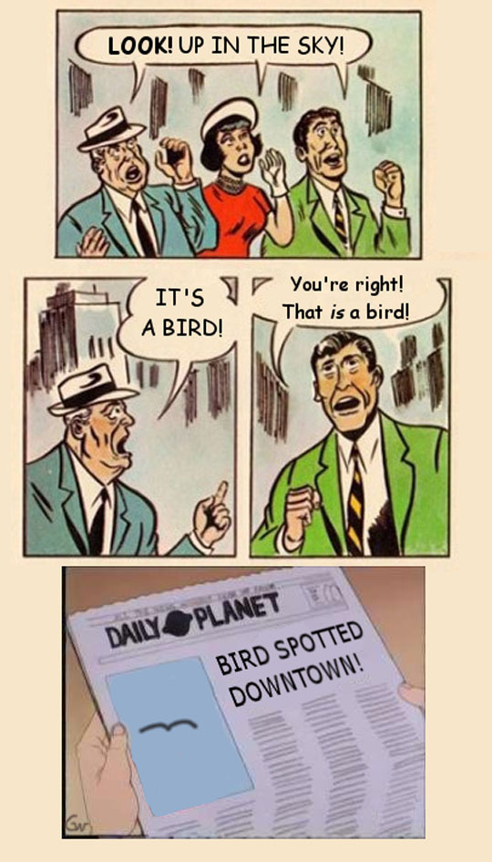 funny-bird-comic-sky-Superman