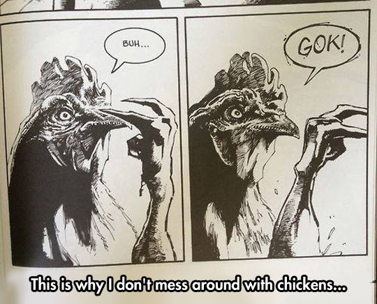 funny-chicken-bad-angry-comic