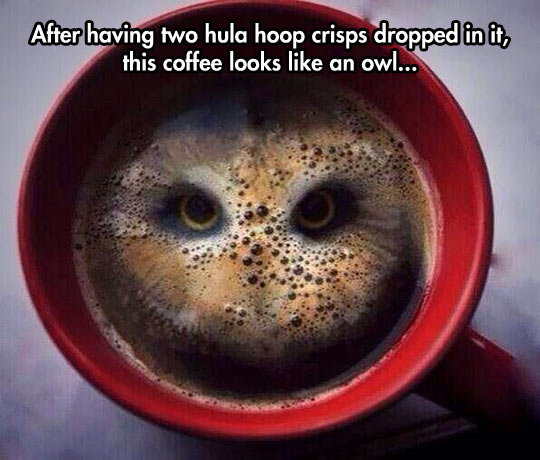 funny-coffee-owl-image-eyes-bubbles