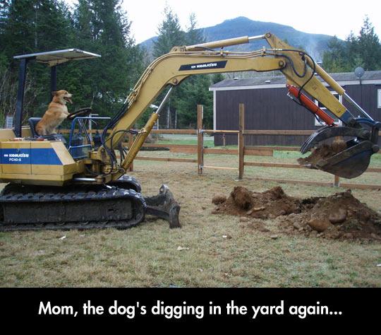 Hey Mom, Do Something