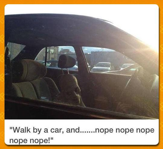 funny-creepy-costume-inside-car-accident-1