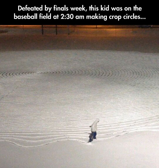 funny-crop-circles-snow-student-defeated