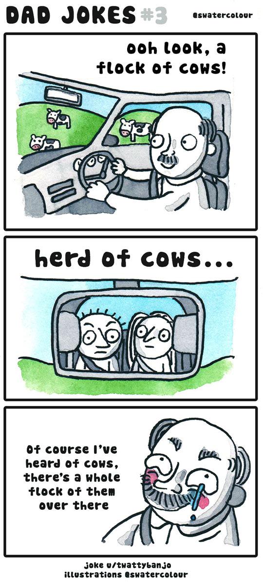 funny-dad-car-cows-herd-comic