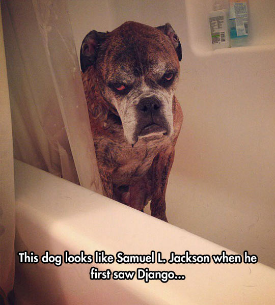 Say Bath One More Time, I Dare You