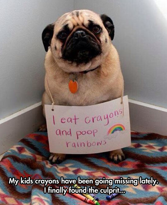 The Crayon's Thief