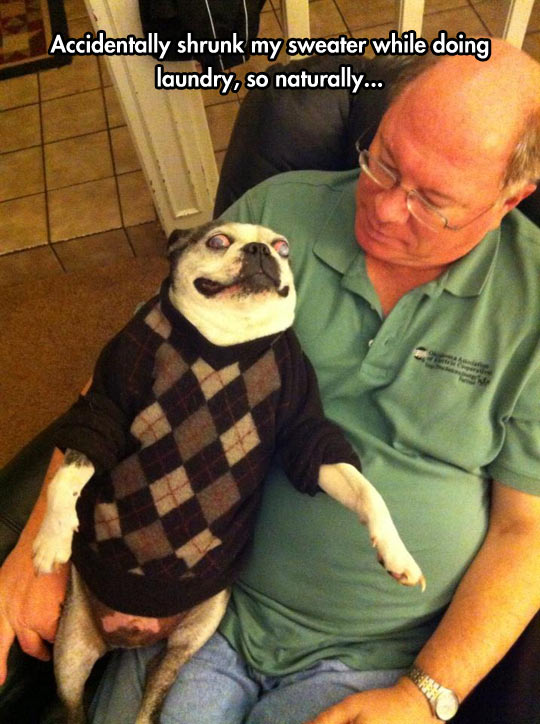 He Got A New Sweater