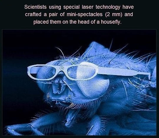 This Is Why I Love Science