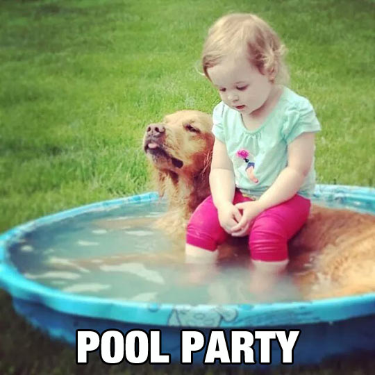 funny-girl-dog-pool-tiny