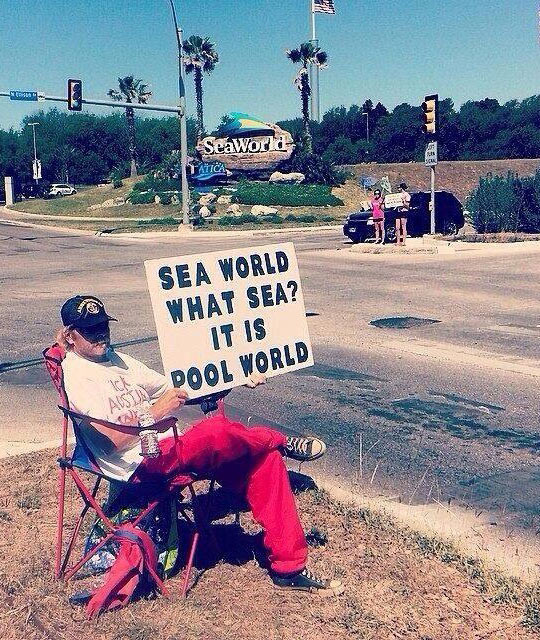 funny-guy-sit-beside-road-sign-Sea-World