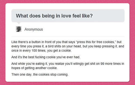 funny-love-feel-cookie-button