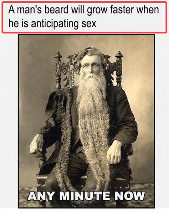 funny-man-beard-fact-growing