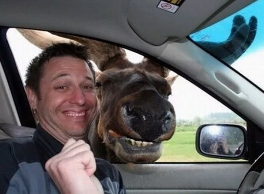 OK, Now Say Cheese