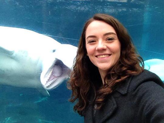 funny-photo-selfie-whales-aquarium-1