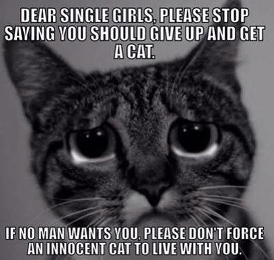 For All The Single Ladies