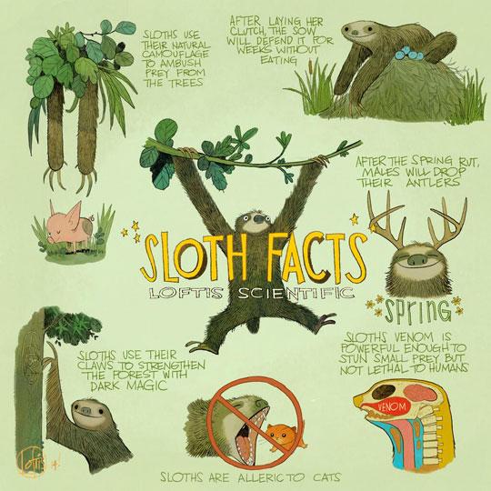 funny-sloth-facts-cartoon-scientific