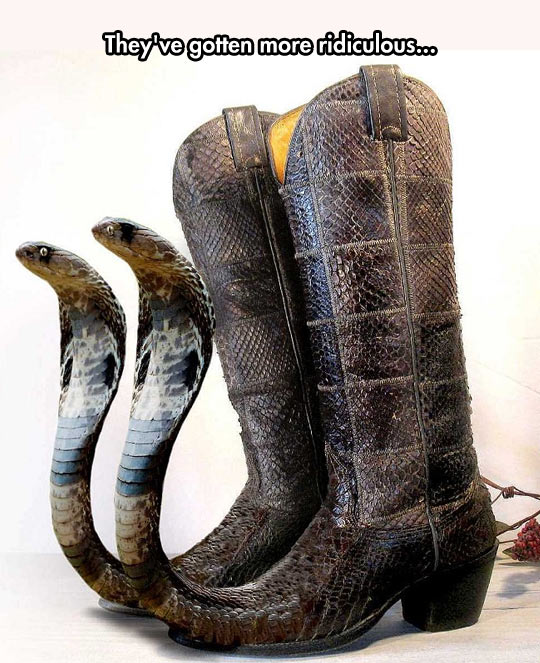 There Are Snakes In My Boots!