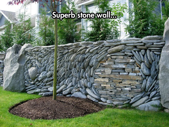 funny-wall-stone-tree-circle