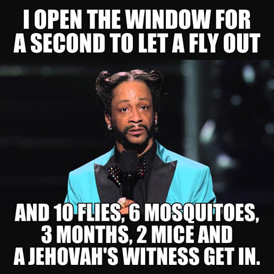 funny-window-open-fly-stand-up