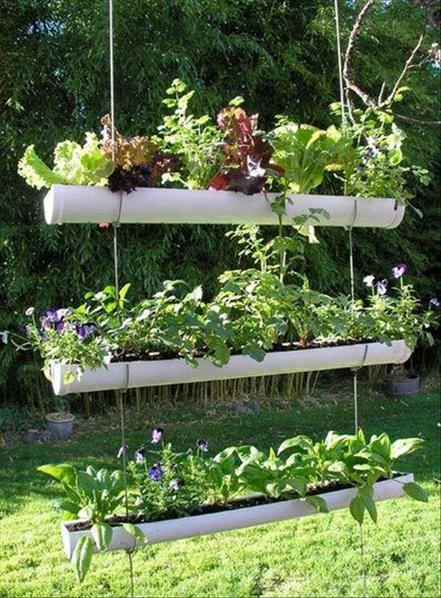 garden-ideas-14