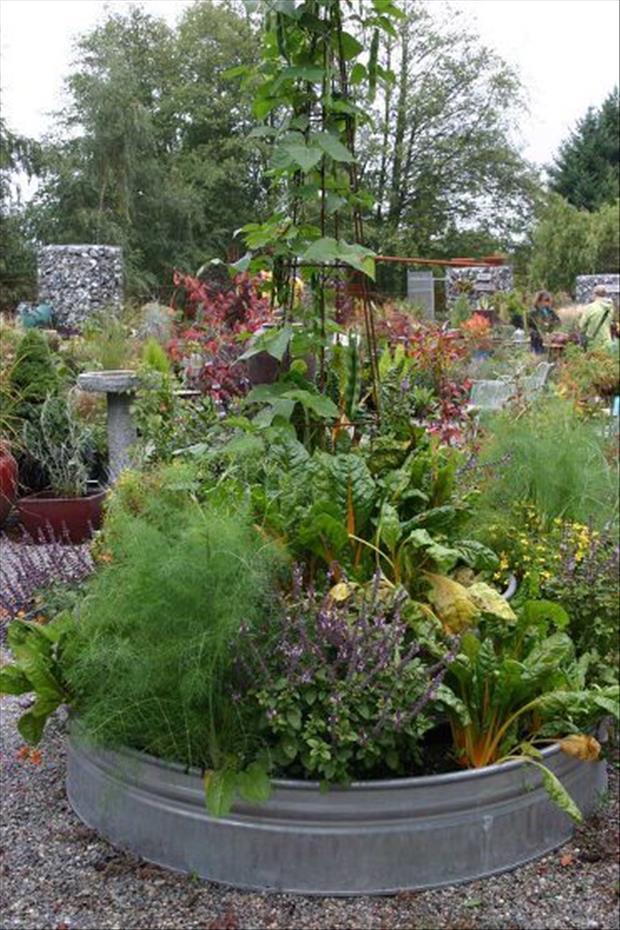 garden-ideas-18