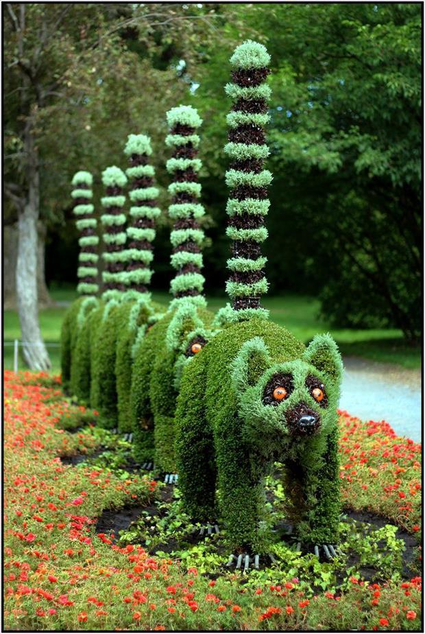 garden-ideas-22