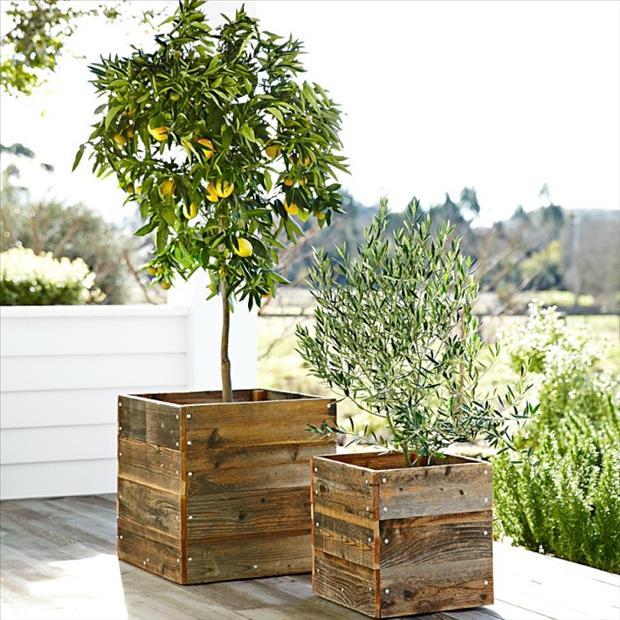 garden-ideas-7