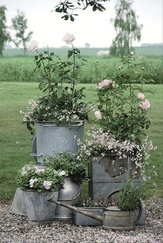 garden-ideas-8