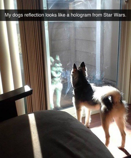 Obi Wan Do you know me