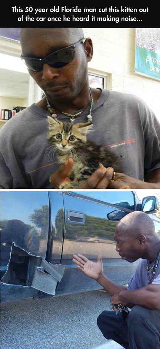Rescuing The Little Kitten