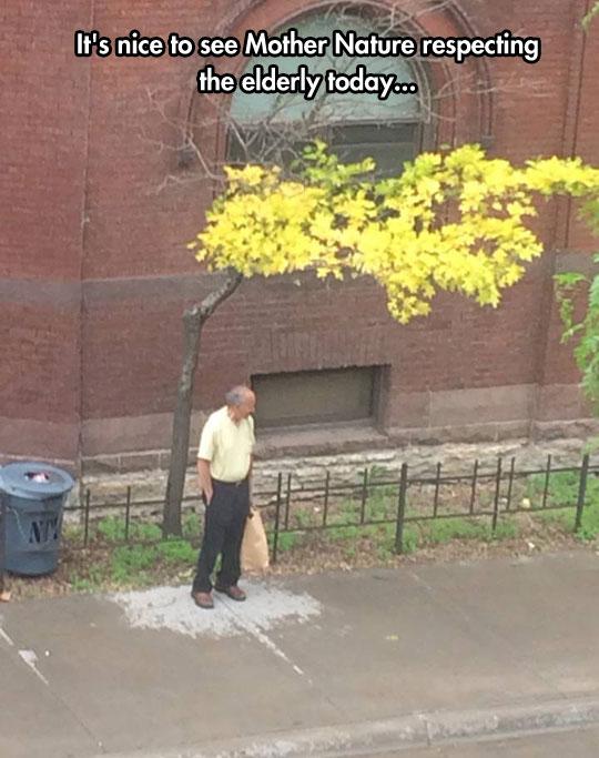 cool-old-man-under-tree-rain