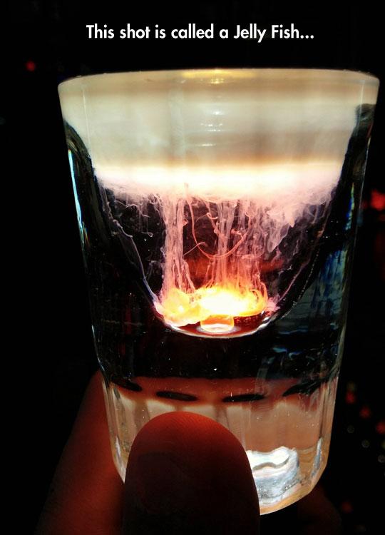 An Amazing Jellyfish Shot